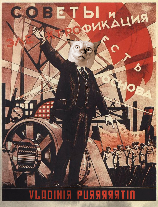 Vladimir Purrrtin by ikb